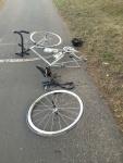 Bike flat large